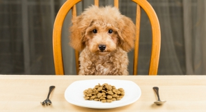 Discussing Trends in the Pet Flavors Market