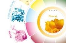 Symrise Acquires Pinova Holdings