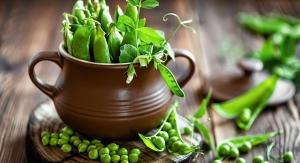 Food Formulators See Increased Use of Diverse Proteins