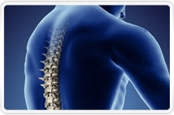 Despite Favorable Demographics, Spinal Implant Market to Show Flat Growth Through 2015