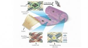 Cyborg Cardiac Patch May Treat the Diseased Heart