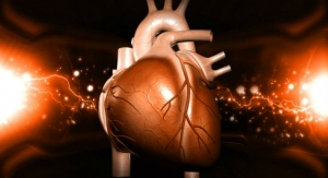 Controlling Heart Cells with a Laser