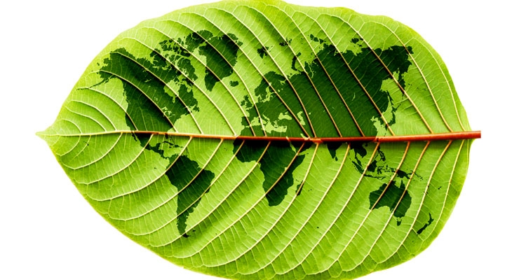 L'Oréal Accelerates Sustainability Program
