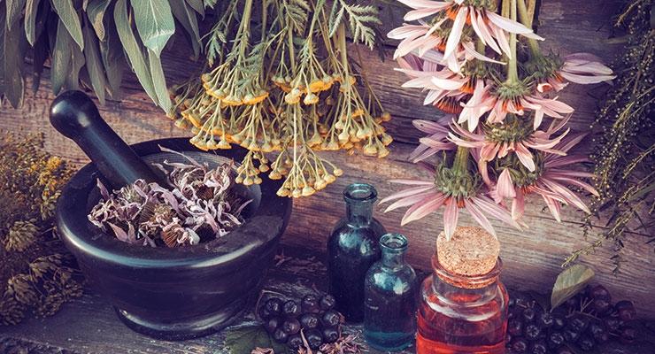 Herbs & Botanicals Bounce Back