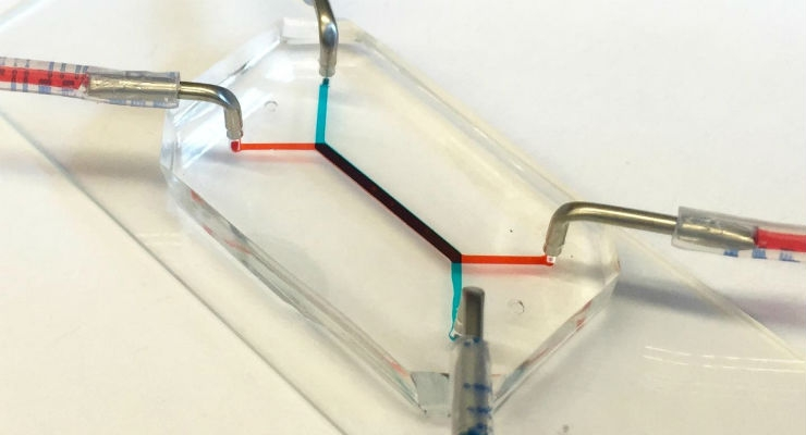 'Placenta-on-a-Chip' Mimics Interface Between Mother and Fetus