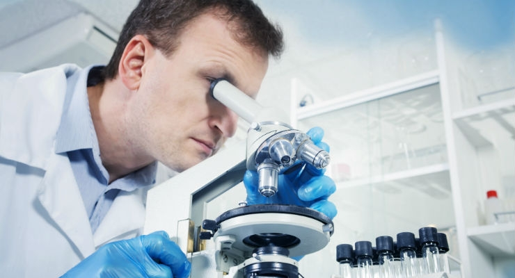 Researchers Solve Mystery on How Regenerative Medicine Works