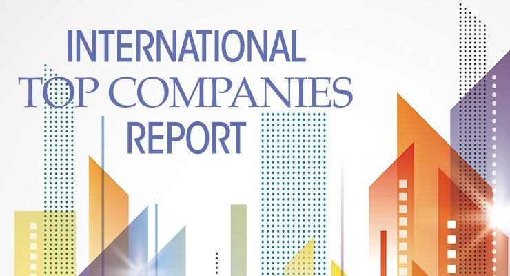 The 2015 Top International Companies Report