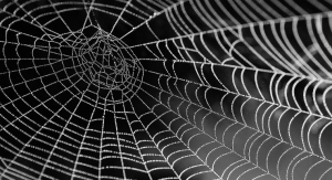 Healing Powers of the Web