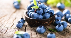Healthy Growth Forecast for Global Processed Superfruits Market