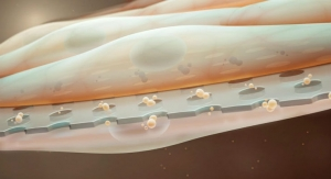 NIH Awards $1.8M Grant to Develop Ultrathin Membranes for Tissue Engineering