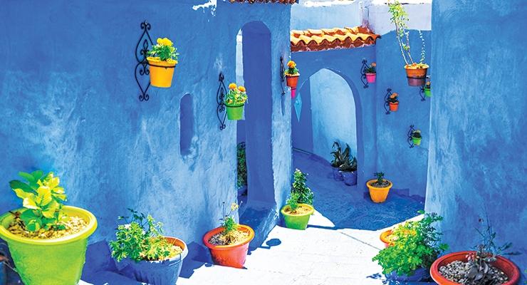 Housing Segment to Drive  Morocco's Coatings Market