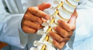 A Better Biosimilar Material for Bone Tissue Regeneration