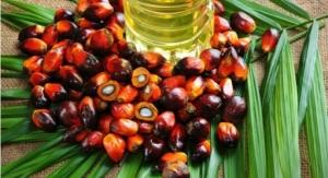 Evonik Expands Palm Oil Portfolio
