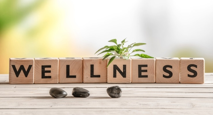 Wellness Means Business