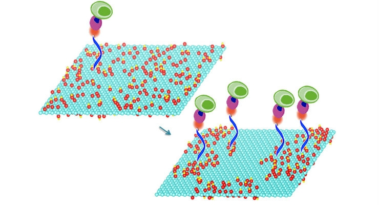 Graphene Sheets Could Enable Low-Cost Diagnostics