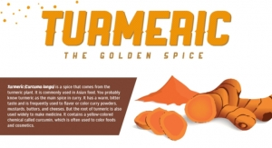 Spotlight on Turmeric: The Golden Spice