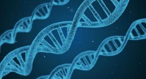 New Gene-Based Blood Tests Identify More Skin Cancers