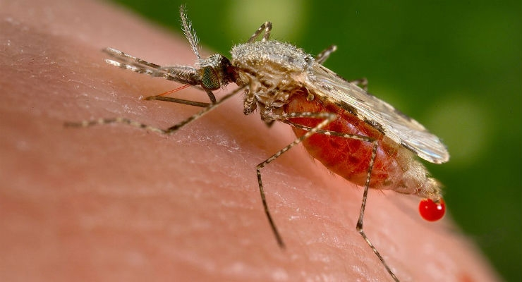 Alere Launches First-Ever Rapid Test to Screen Asymptomatic Malaria
