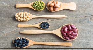 Focus on Plant-Based Protein
