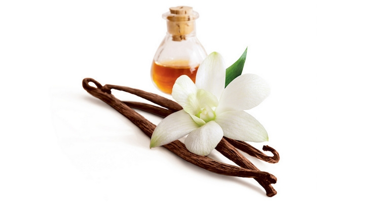 Vanilla: The Story of a Staple Scent