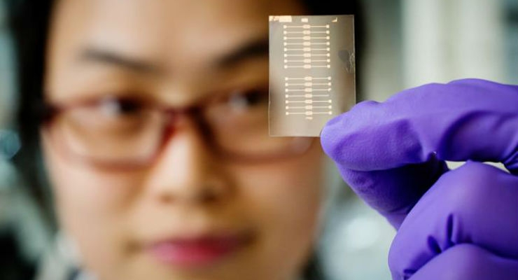 The researchers made sensors from porous thin films of organic conductive plastics with the goal of portable, disposable devices for medical and environmental monitoring. Image courtesy of L. Brian Stauffer