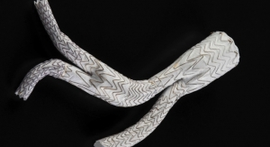 GORE EXCLUDER Iliac Branch Endoprosthesis Approved in Japan