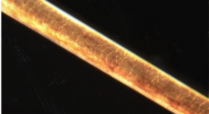 Super-Sensitive Measurement Method Could Advance Medical Research