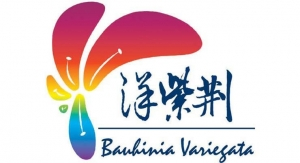 13 Bauhinia Variegata Ink & Chemicals Limited