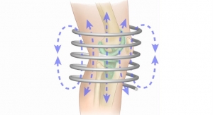 Magnetic Fields Wipe Out Bacteria from Artificial Joints