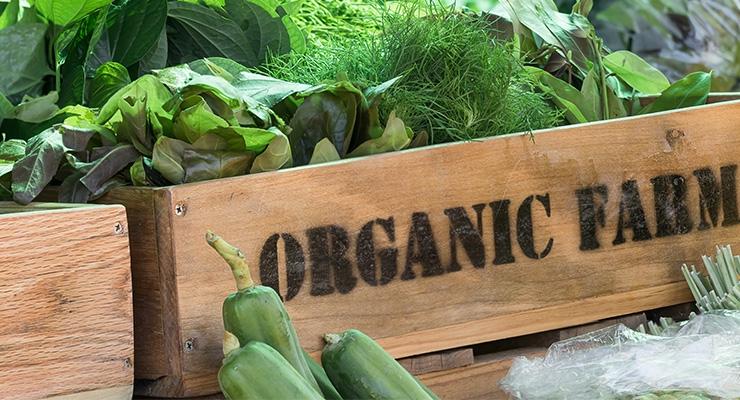 Mintel Finds Half of U.S. Shoppers Seek Organic Produce