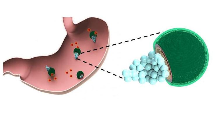 Drug-Delivering Micromotors Fueled by Stomach Acid
