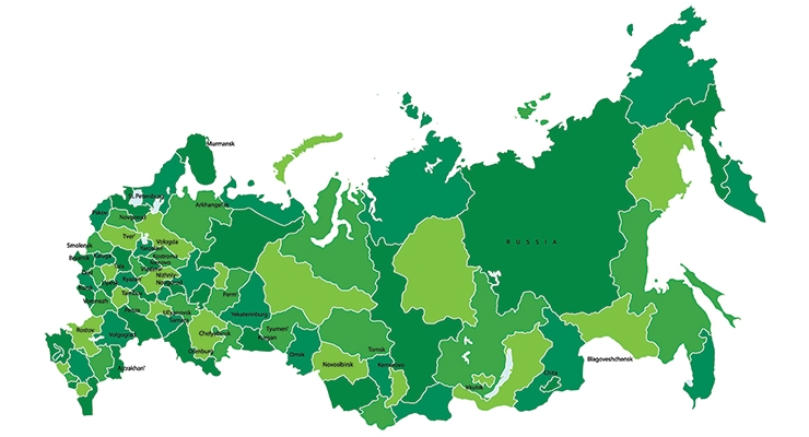 Russian Nonwovens Industry May Reach Historical Highs This Year