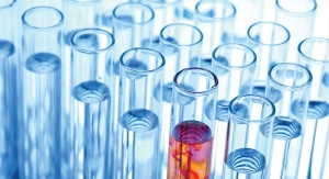 The Challenges of Drug Development