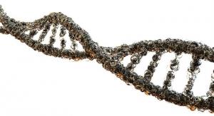 FDA Approves First Breakthrough-Designated Next-Gen Sequencing IVD Cancer Test