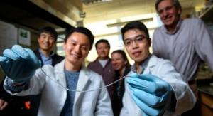 Spiderweb Inspires Removable Implant to Control Type 1 Diabetes