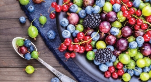 Consumers Seek Added Nutritional Boost from Antioxidants