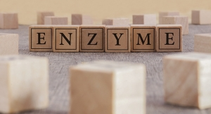 Enzymes: Moving Beyond Digestion