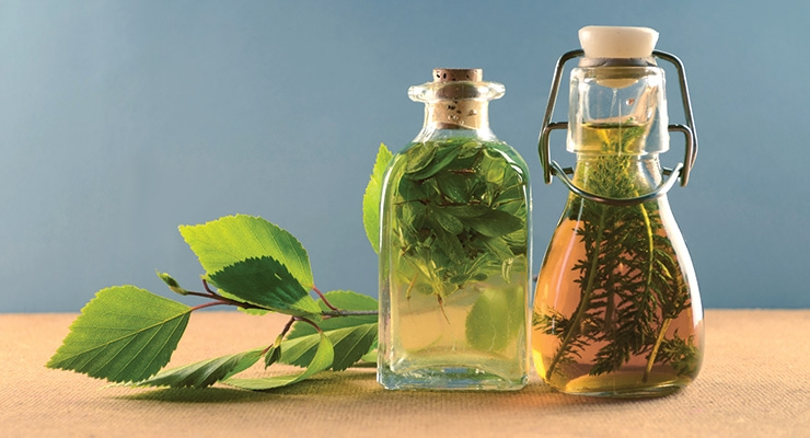 Botanical Claims in Europe: A Never-Ending Story