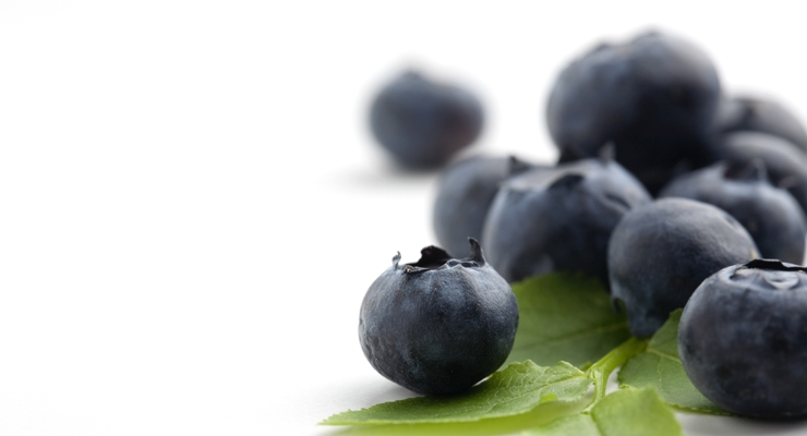 Anthocyanins from Berries Linked to Possible Cancer Treatment