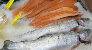Research Finds Fatty Fish and Camelina Oil Benefit Cholesterol