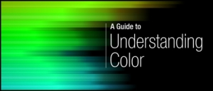A Guide to Understanding Color