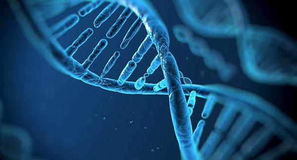 WCG and InformedDNA Enter Strategic Partnership