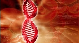 Applied DNA Announces CRO & CMO Milestones