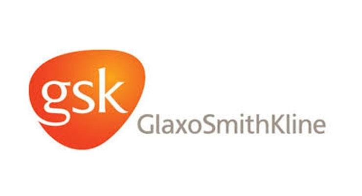 14. GlaxoSmithKline