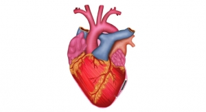 CHLA/USC Researchers Design Novel Micropacemaker