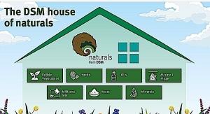 DSM Unveils House of Naturals