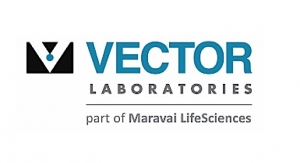 Vector Labs Attains ISO 9001:2015 Certification