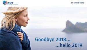 DSM Looks Back on 2018