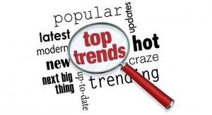 Trend Spotlight for 2019