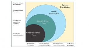 Strategies for Growth: Considering the Options